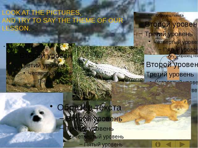 LOOK AT THE PICTURES, AND TRY TO SAY THE THEME OF OUR LESSON.