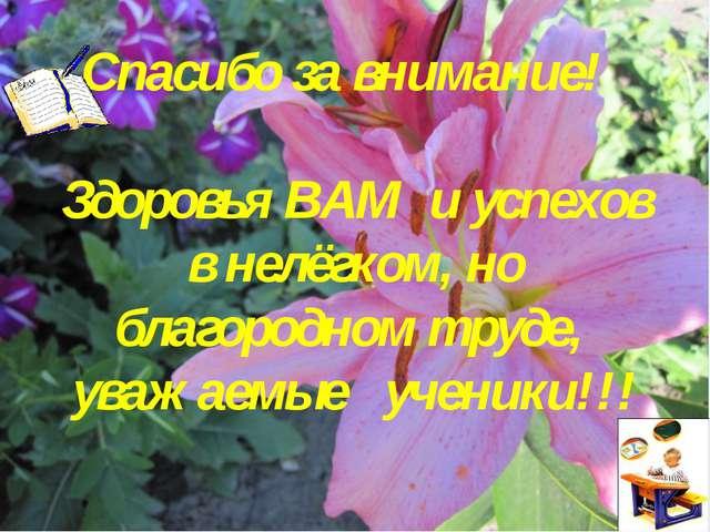 Спасибо за внимание! Здоровья ВАМ и успехов в нелёгком, но благородном труде...