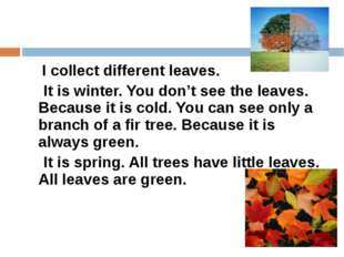 I collect different leaves. It is winter. You don't see the leaves. Because