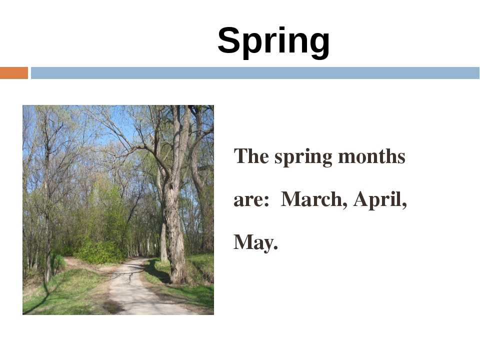Spring The spring months are: March, April, May.