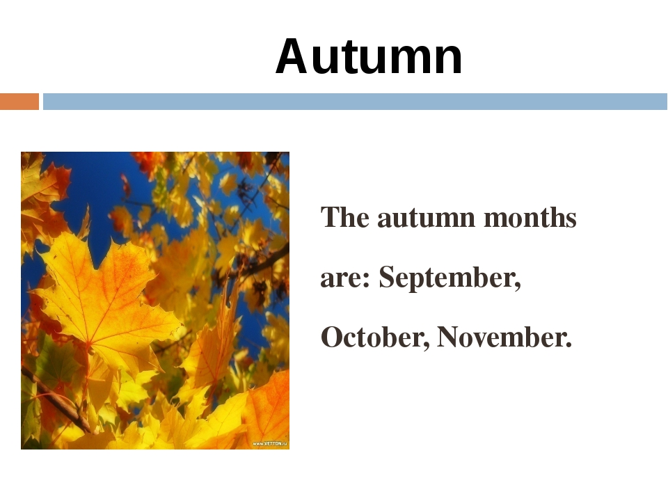 Autumn The autumn months are: September, October, November.