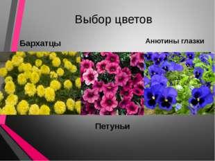 Выбор цветов Бархатцы Петуньи Анютины глазки
