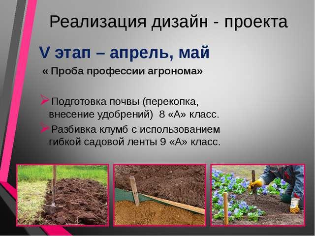 Реализация дизайн - проекта V этап – апрель, май « Проба профессии агронома»...