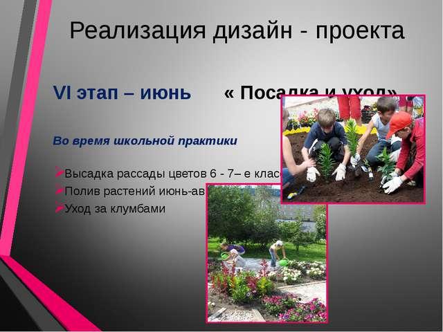 Реализация дизайн - проекта VI этап – июнь « Посадка и уход» Во время школьно...