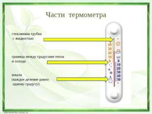 Части термометра стеклянная трубка с жидкостью граница между градусами тепла