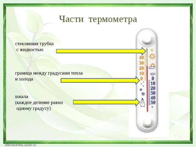 Части термометра стеклянная трубка с жидкостью граница между градусами тепла...