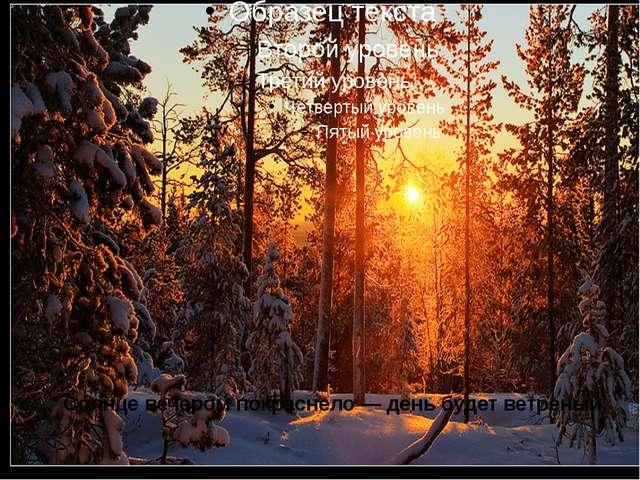 Солнце вечером покраснело — день будет ветреный.