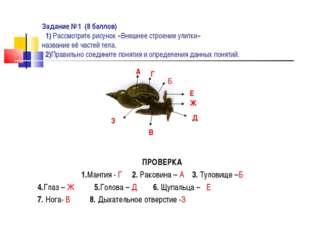 Задание №1 (8 баллов) 1) Рассмотрите рисунок «Внешнее строение улитки» назван