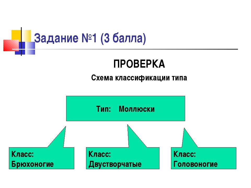 Задание №1 (3 балла) ПРОВЕРКА Схема классификации типа Тип: Моллюски Класс: Б...