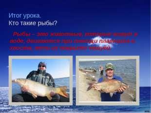 Итог урока. Кто такие рыбы? Рыбы – это животные, которые живут в воде, двигаю