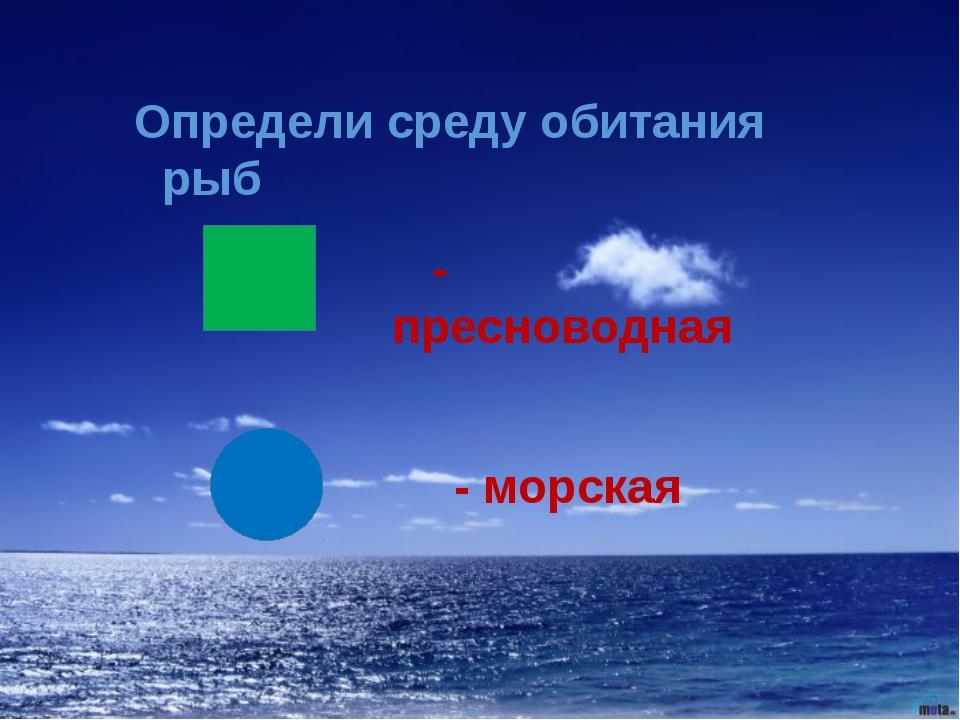 Определи среду обитания рыб - пресноводная - морская