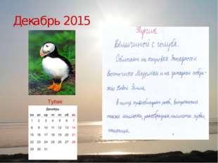 Декабрь 2015 Тупик