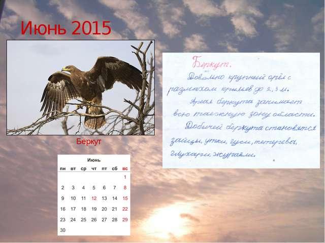 Июнь 2015 Беркут