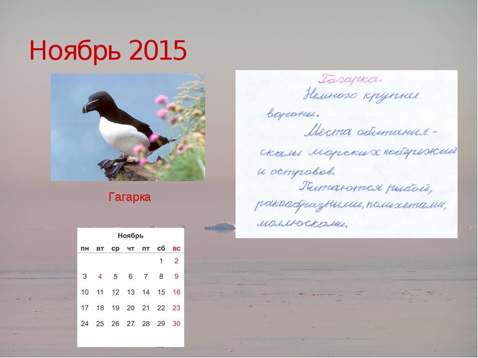 Ноябрь 2015  Гагарка