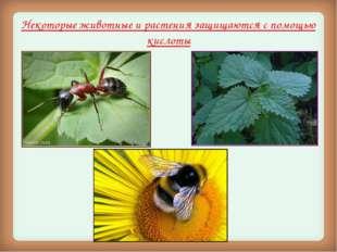 Некоторые животные и растения защищаются с помощью кислоты