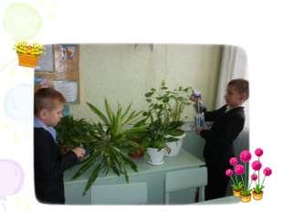 Есть команда цветоводов – сами, как в саду цветы. Это наш Вадим с Никитой. Мо