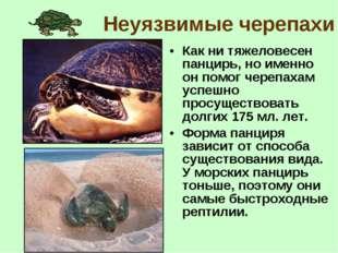 Неуязвимые черепахи Как ни тяжеловесен панцирь, но именно он помог черепахам