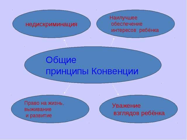 Общие принципы Конвенции недискриминация Наилучшее обеспечение интересов ребё...