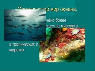 Органический мир океана. В океане сосредоточено более половины живого веществ