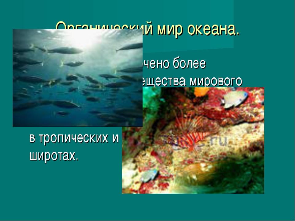 Органический мир океана. В океане сосредоточено более половины живого веществ...