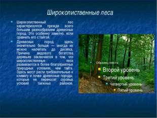 Широколиственные леса Широколиственный лес характеризуется прежде всего больш