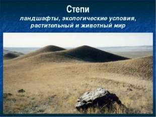 Степи ландшафты, экологические условия, растительный и животный мир