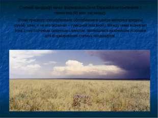 Степной ландшафт начал формироваться на Евразийском континенте с палеогена (6