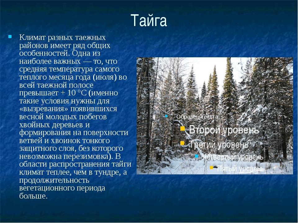 Тайга Климат разных таежных районов имеет ряд общих особенностей. Одна из наи...