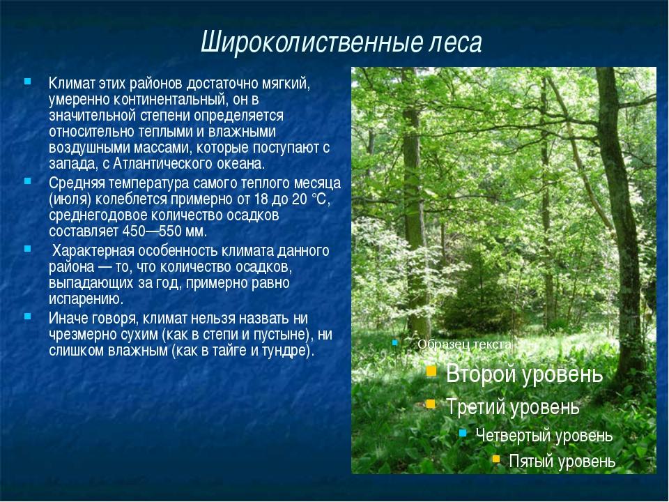Широколиственные леса Климат этих районов достаточно мягкий, умеренно контине...