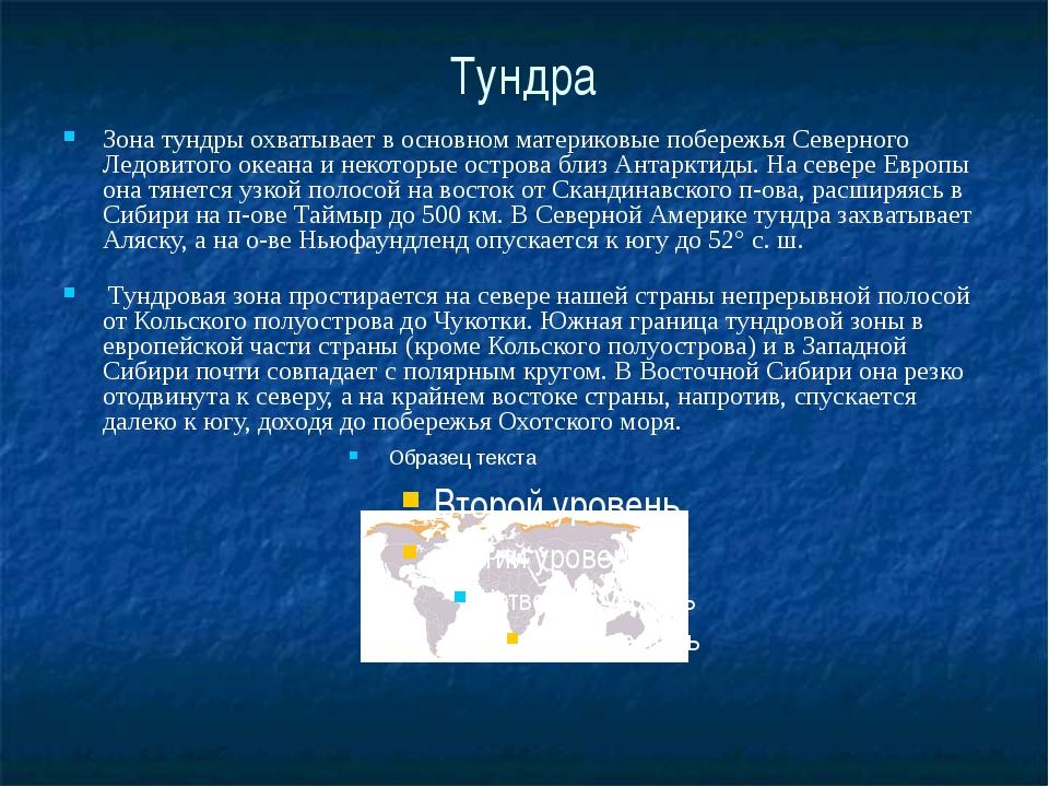 Тундра Зона тундры охватывает в основном материковые побережья Северного Ледо...