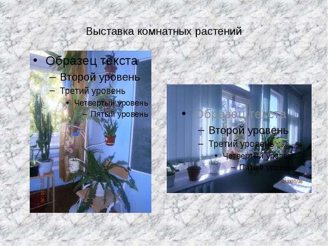 Выставка комнатных растений