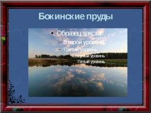 Бокинские пруды
