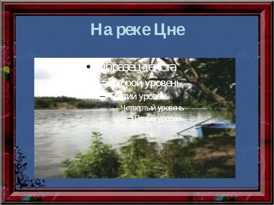 На реке Цне