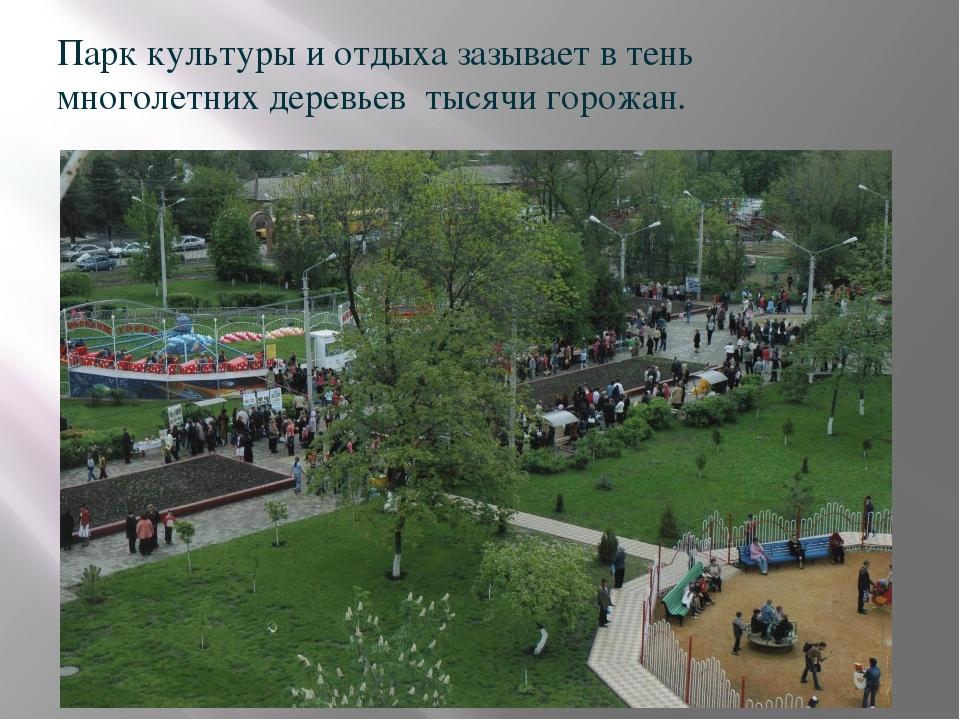 Парк культуры и отдыха зазывает в тень многолетних деревьев тысячи горожан.