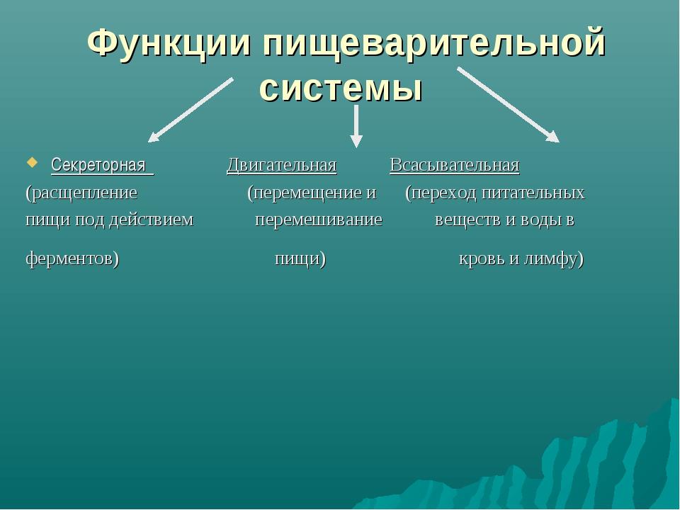Функции пищеварительной системы Секреторная Двигательная Всасывательная (расщ...