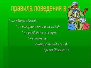 * не рвать цветов; * не разорять птичьих гнёзд; * не разводить костры; * не