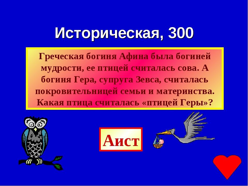 Историческая, 300 Аист