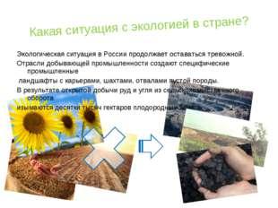 Какая ситуация с экологией в стране? Экологическая ситуация в России продолжа