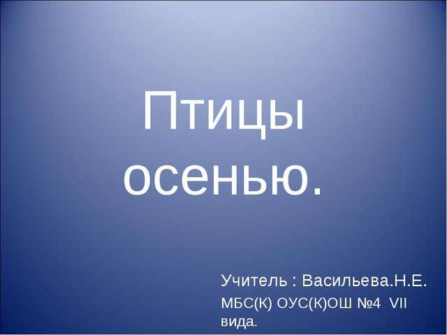 Птицы осенью. Учитель : Васильева.Н.Е. МБС(К) ОУС(К)ОШ №4 VII вида.