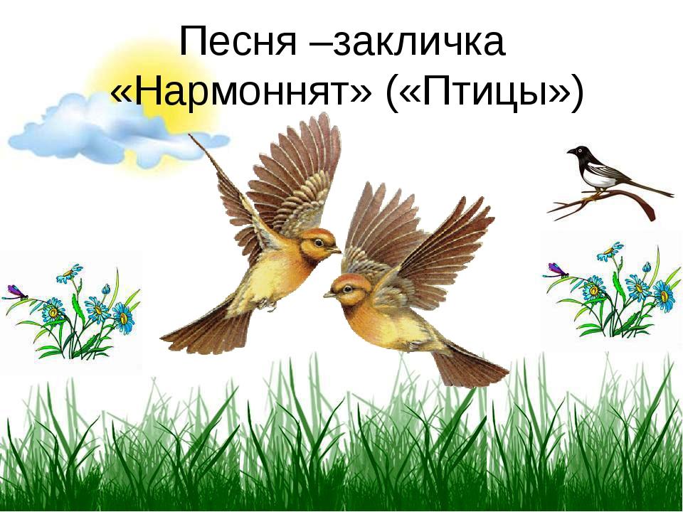 Песня –закличка «Нармоннят» («Птицы»)