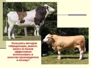 Пользуясь методом гибридизации, решите, какого из быков эффективнее использо