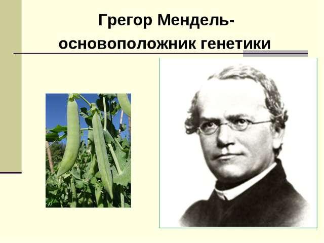 Грегор Мендель- основоположник генетики