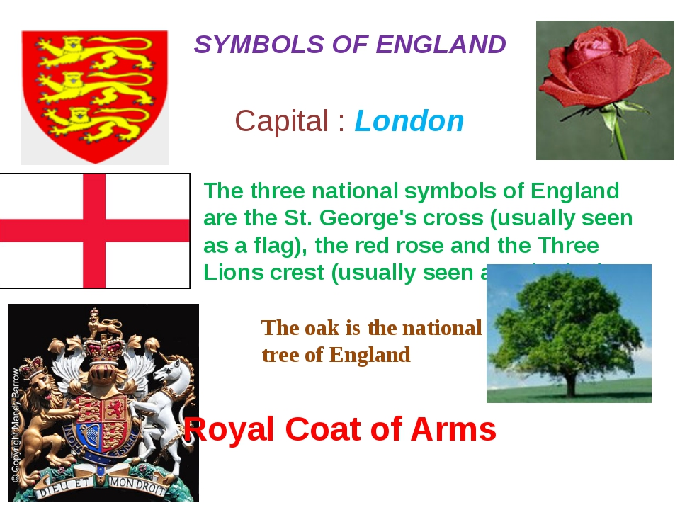 The three national symbols of England are the St. George's cross (usually see...