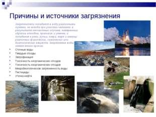 Причины и источники загрязнения Загрязнители попадают в воду различными путя