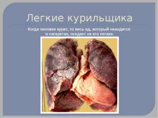 Легкие курильщика Когда человек курит, то весь яд, который находится в сигаре