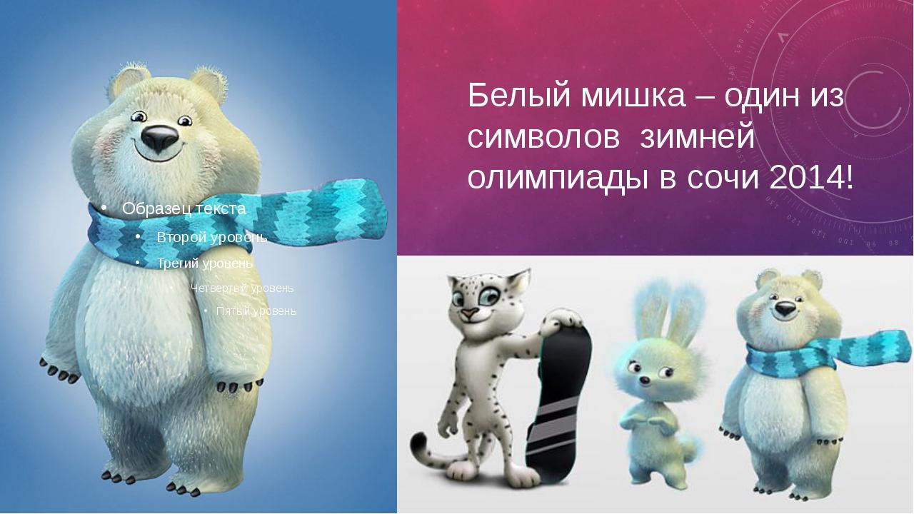 Белый мишка – один из символов зимней олимпиады в сочи 2014!
