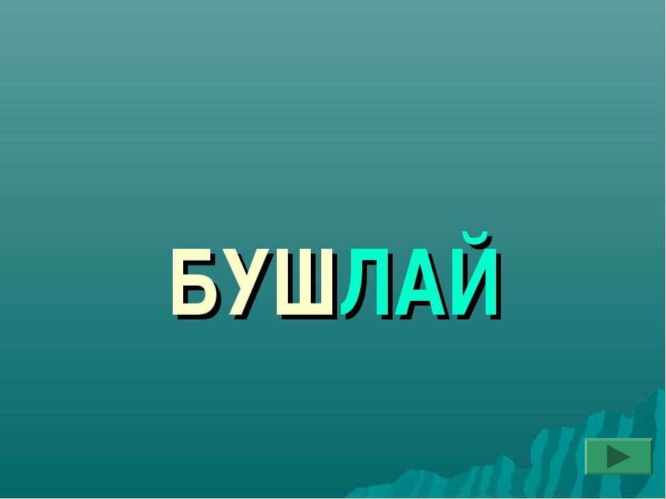 БУШЛАЙ