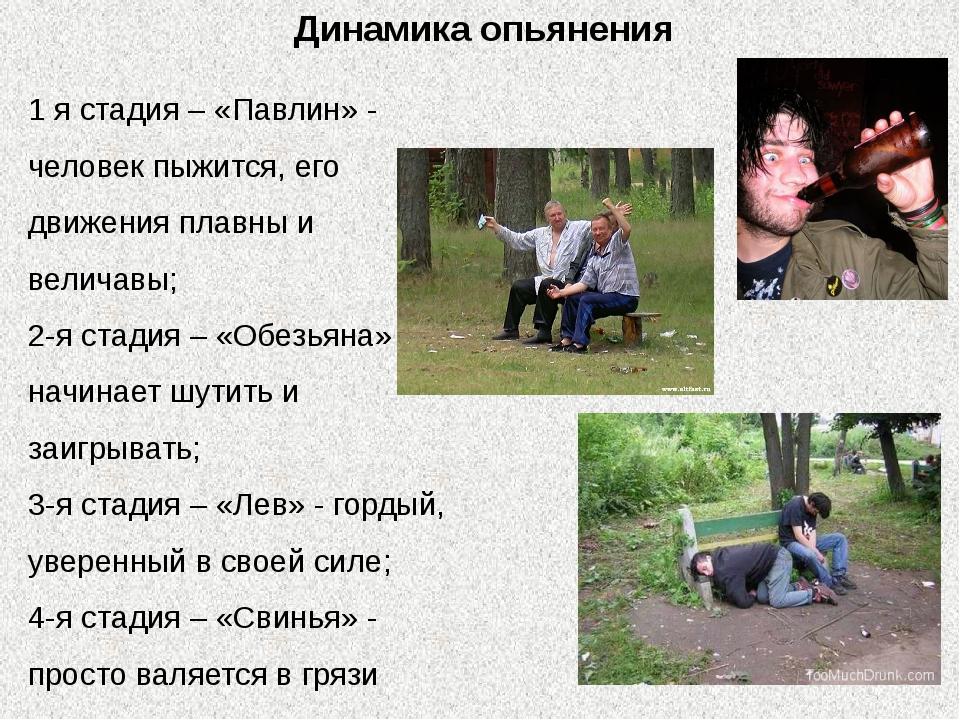 Динамика опьянения 1 я стадия – «Павлин» - человек пыжится, его движения плав...