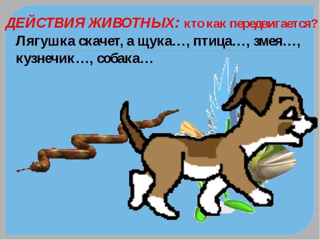ДЕЙСТВИЯ ЖИВОТНЫХ: кто как передвигается? Лягушка скачет, а щука…, птица…, зм...