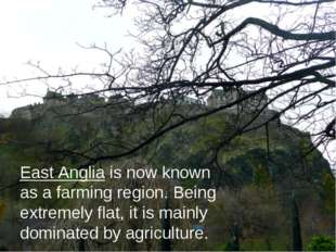 East Anglia is now known as a farming region. Being extremely flat, it is mai